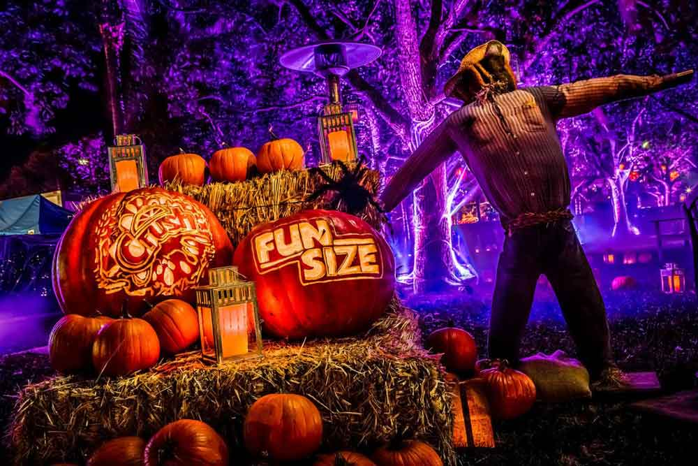 Fun Size premiere event pumpkin patch display props